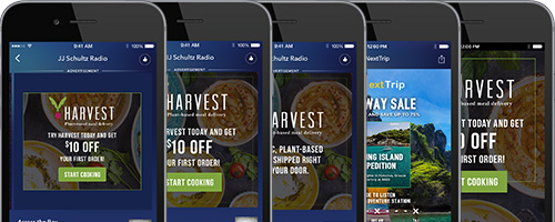 Pandora Advertising Design Templates - Video ad templates